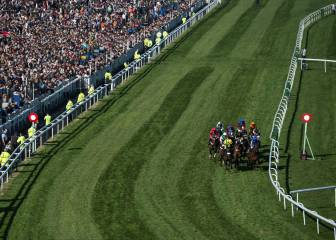 Vieux Lion Rouge y Definitly Red favoritos en el Grand National