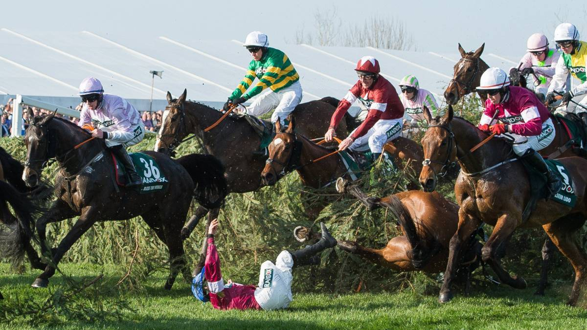El pequeño 'Tiger Roll' vence el Grand National con foto-finish