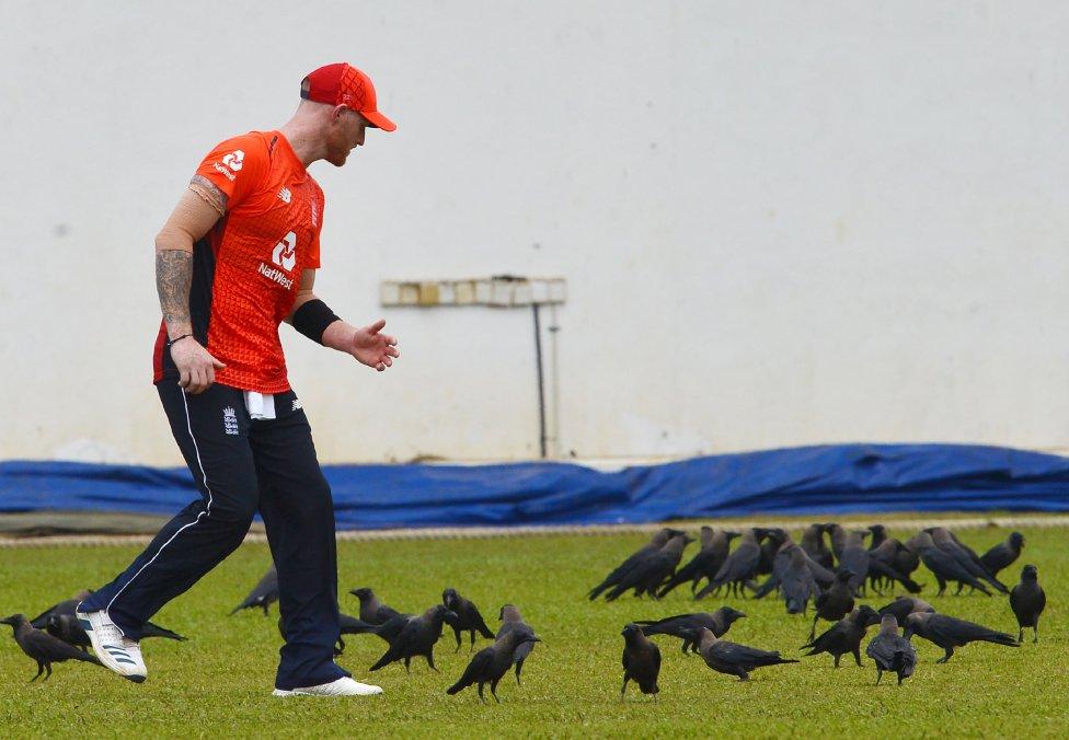 El jugador de cricket de Inglaterra, Ben Stokes, rodeado de cuervos durante el partido de entrenamiento entre el Sri Lanka Board XI y el equipo de Inglaterra en el estadio de cricket Oval de P. Sara en Colombo