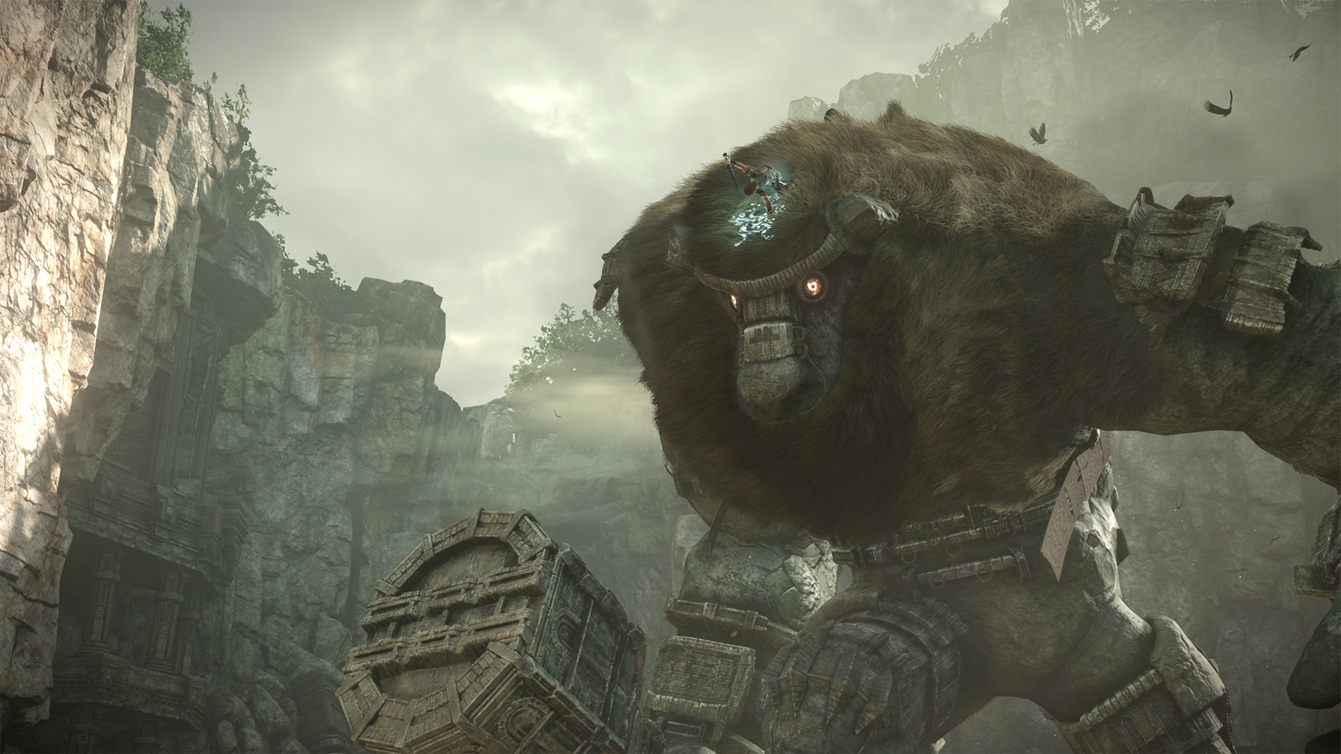 Bluepoint trabaja en remake más grande que Shadow of the Colossus