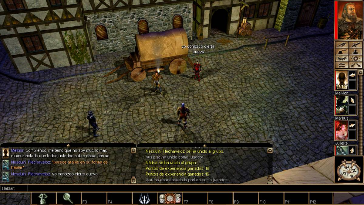 neverwinter nights enhanced edition character editor