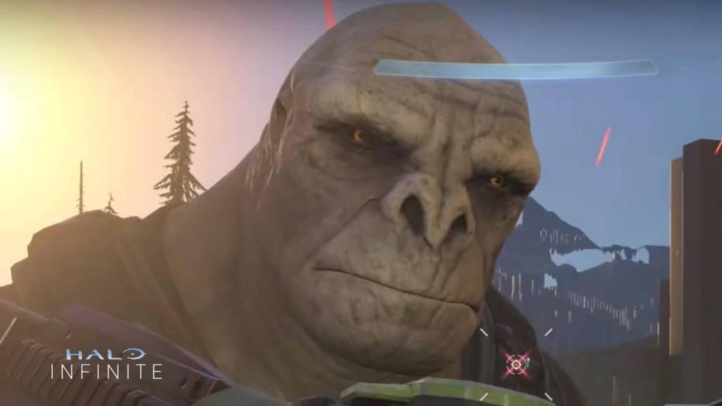 """Halo Infinite: Craig, el Brute del meme, es """"la mascota de Xbox"""", según  Phil Spencer - MeriStation"""