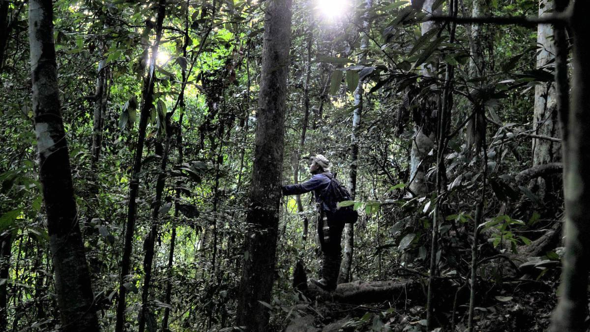 D a mundial del medio ambiente conecta con la naturaleza for Noticias naturaleza