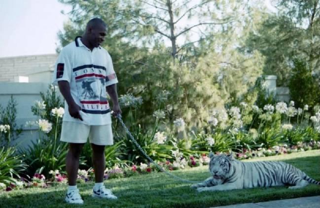 Resultado de imagen para mike tyson tiger pet
