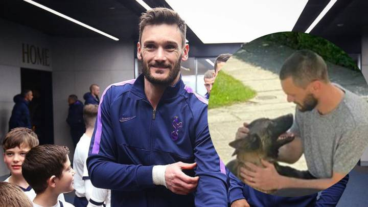 Lloris: Tottenham star spends five figures on 'personal protection dog'