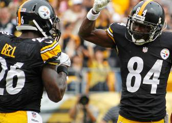 NFL Fantasy 2017: Pittsburgh Steelers