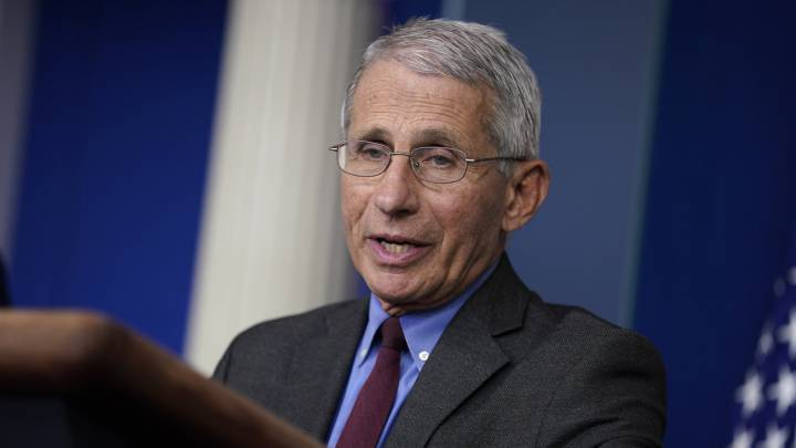 Anthony Fauci ve posible apertura parcial de Estados Unidos en ...