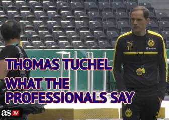 Thomas Tuchel - what the professionals say