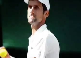 Angry Djokovic almost throws ball at Wimbledon umpire!