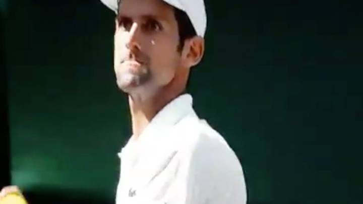 Novak Djokovic almost throws ball at Wimbledon umpire!
